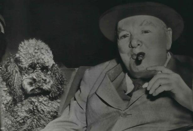 Churchill and Rufus