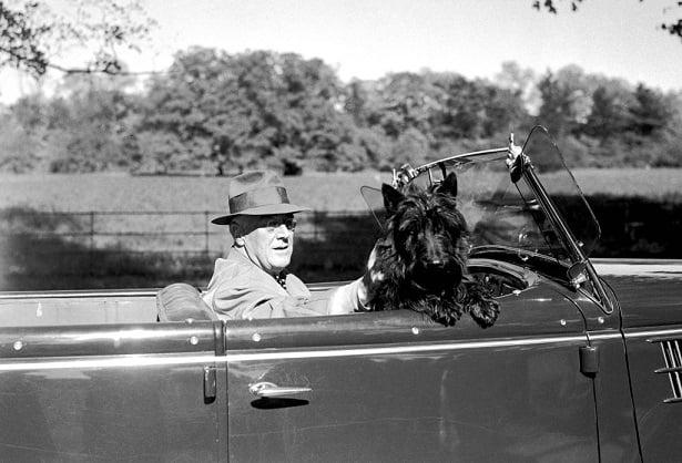 Roosevelt e Fala