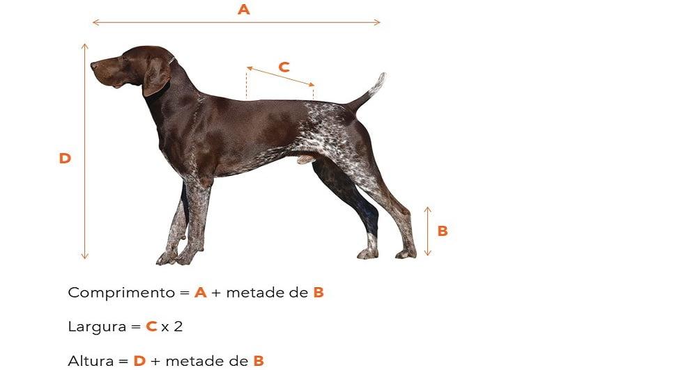 medidas crate cão